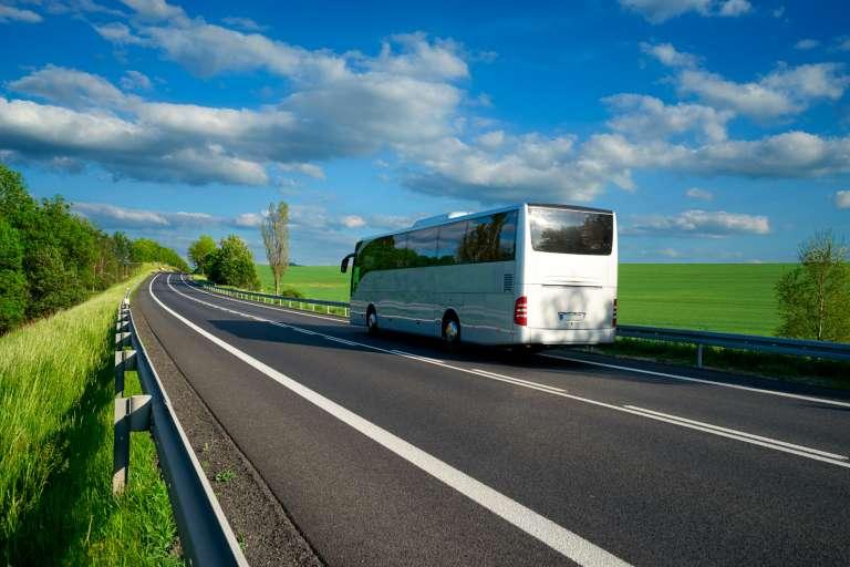 Linea Bus da tutta Italia